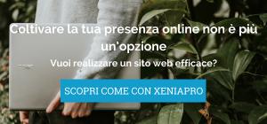 CTA_ Realizzazione siti web e contenuti turismo